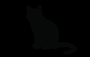 Spiegel-Express vrijdag de 13e Zwarte kat